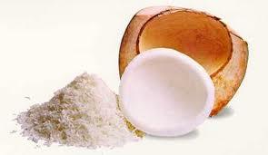 Harina de Coco Orgánica kilo