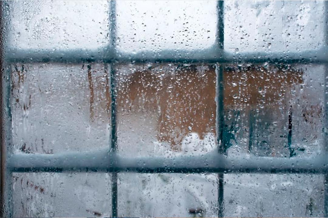 Observaciones en cuanto a la humedad, suciedad y temperaturas extremas.