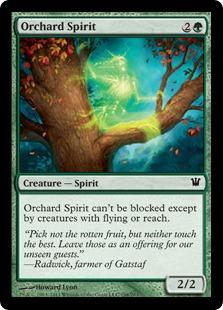 Orchard Spirit - INS - C