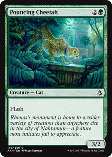 Pouncing Cheetah - AKH
