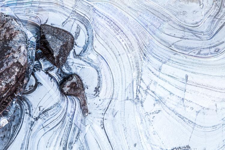 Charla Online: Composición - imagen 2