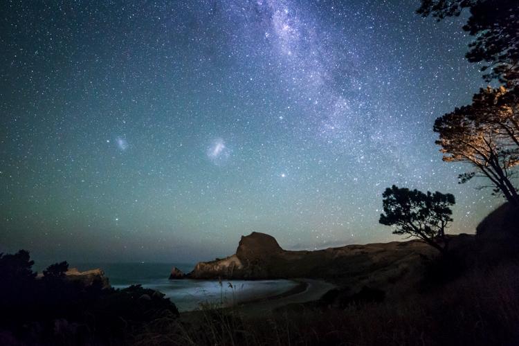 New Zealand | Daniel | Rood