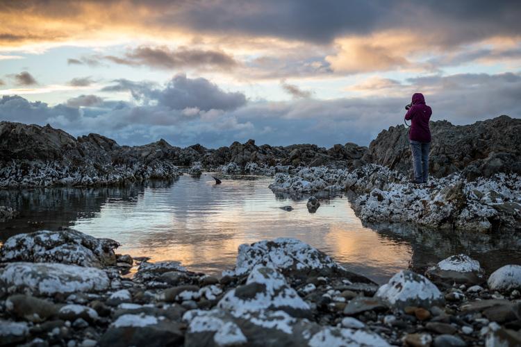 New Zealand | Miles Holden