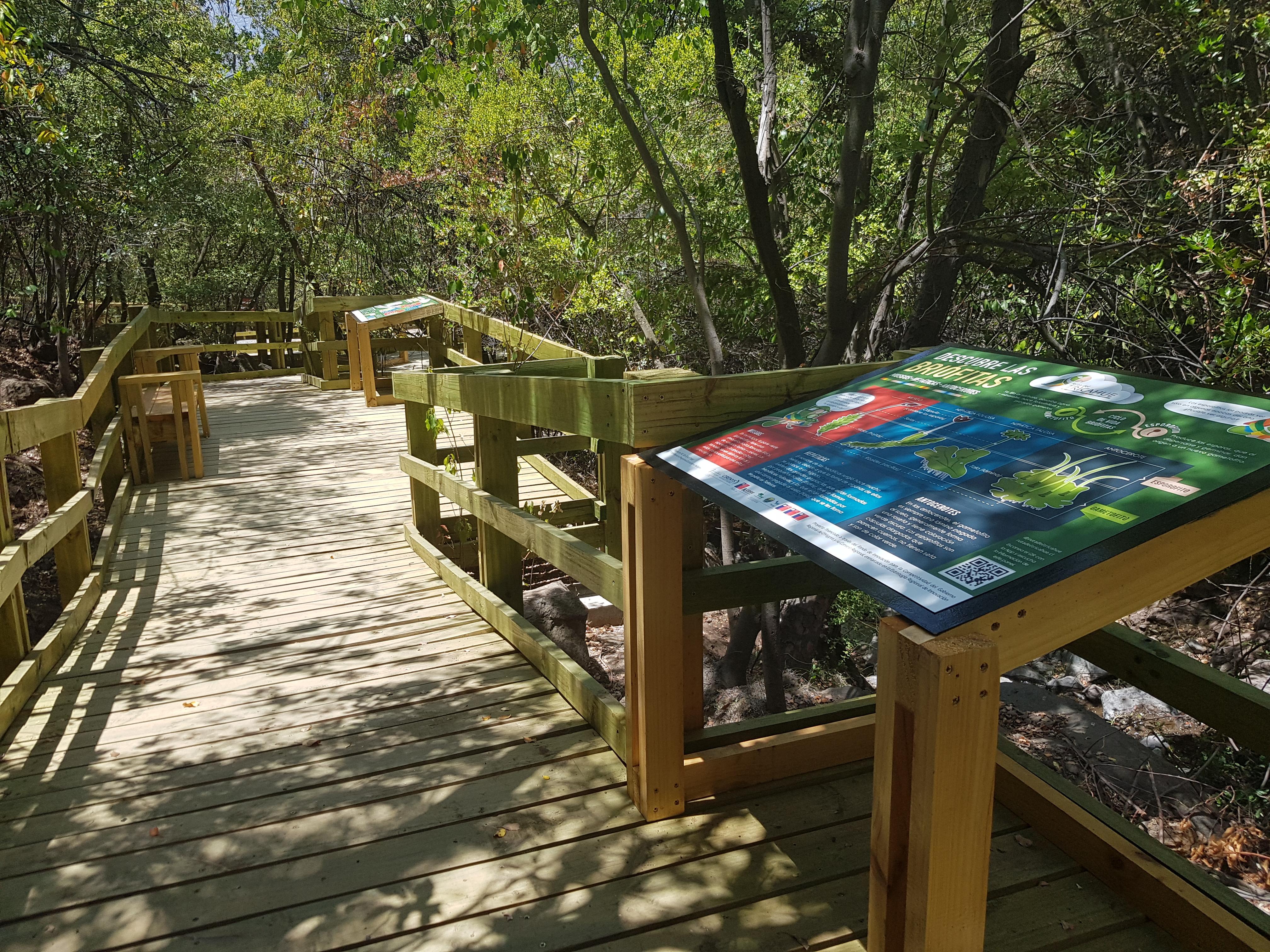 Sendero del Agua y experiencia de realidad virtual en Ruta del Tricahue.