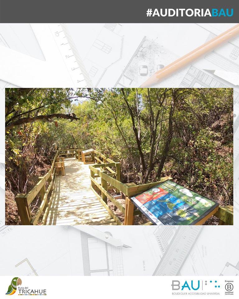 Diseño de Sendero del Agua, en Ruta Tricahue, Reserva Nacional Río de los Cipreses