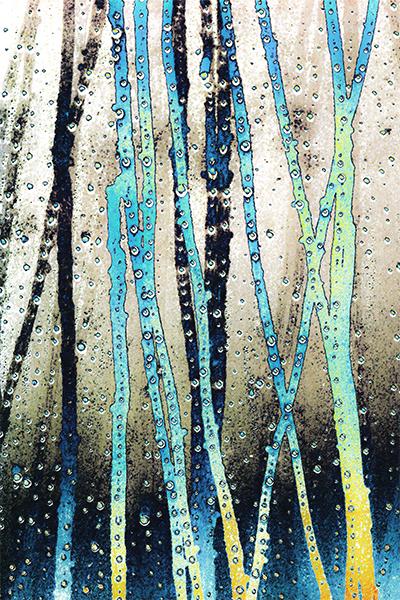 Senderos de Agua 1
