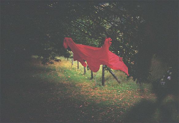 El pañuelo rojo
