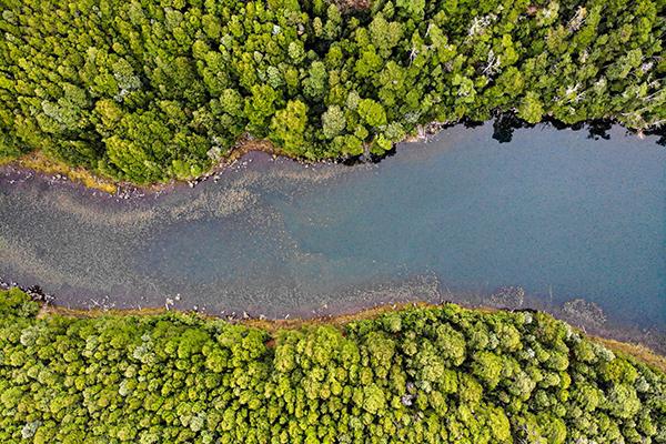 Laguna del medio