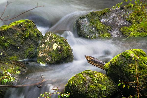 El Flujo I