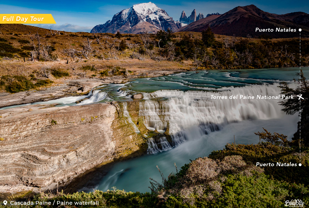 Photo Safari in Torres del Paine Park Experience