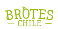 Logo Brotes Chile