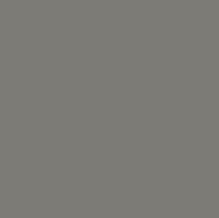 Mantel GRIS Oscuro Color Liso ⚫ Redondo 2-4 Sillas