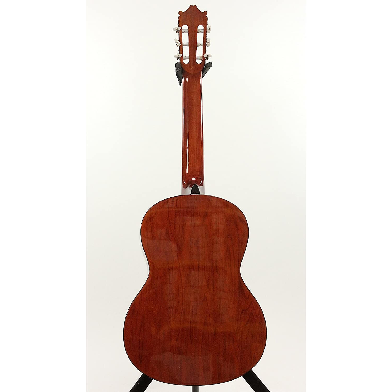 Guitarra Acustica Ibanez GA3V AM