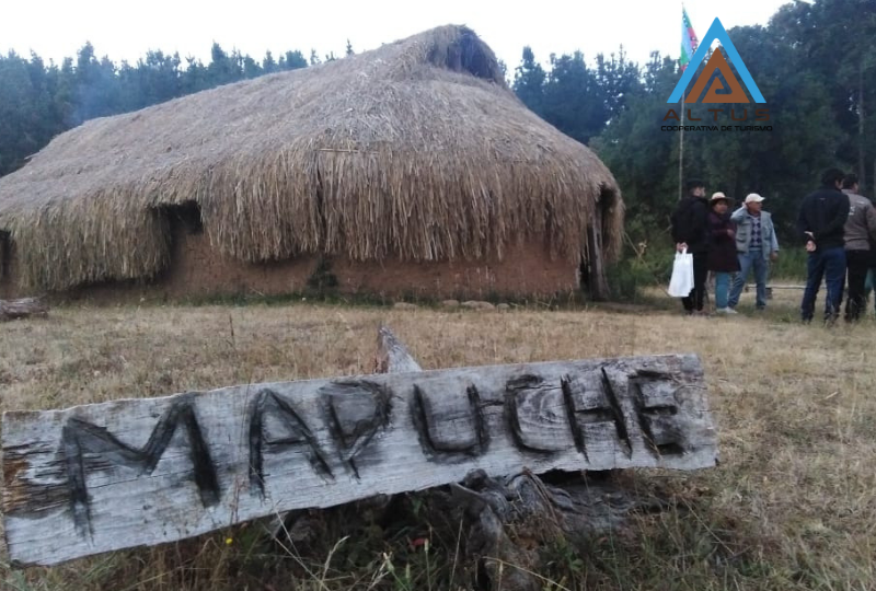 Chronicles of my experience with the Mapuche community.
