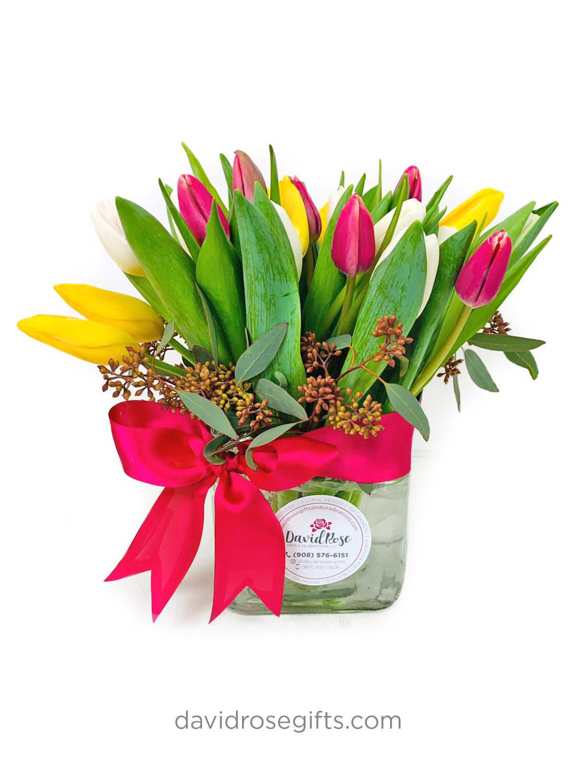 Lovin Tulips