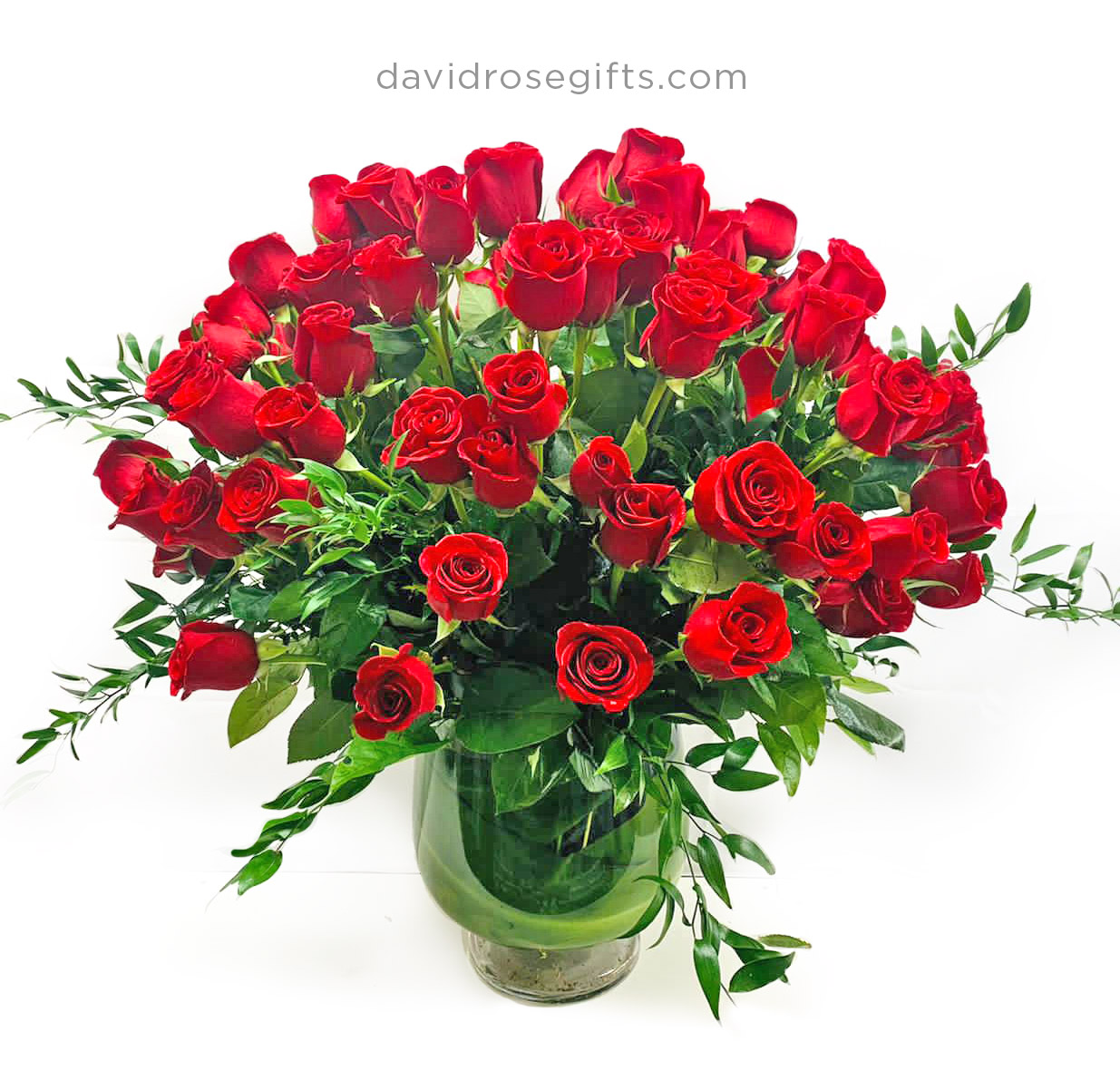 100 Roses!