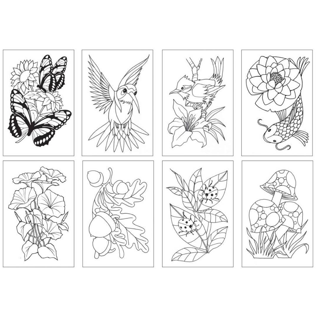 Chameleon Color Cards - Tarjetas para Colorear; Naturaleza
