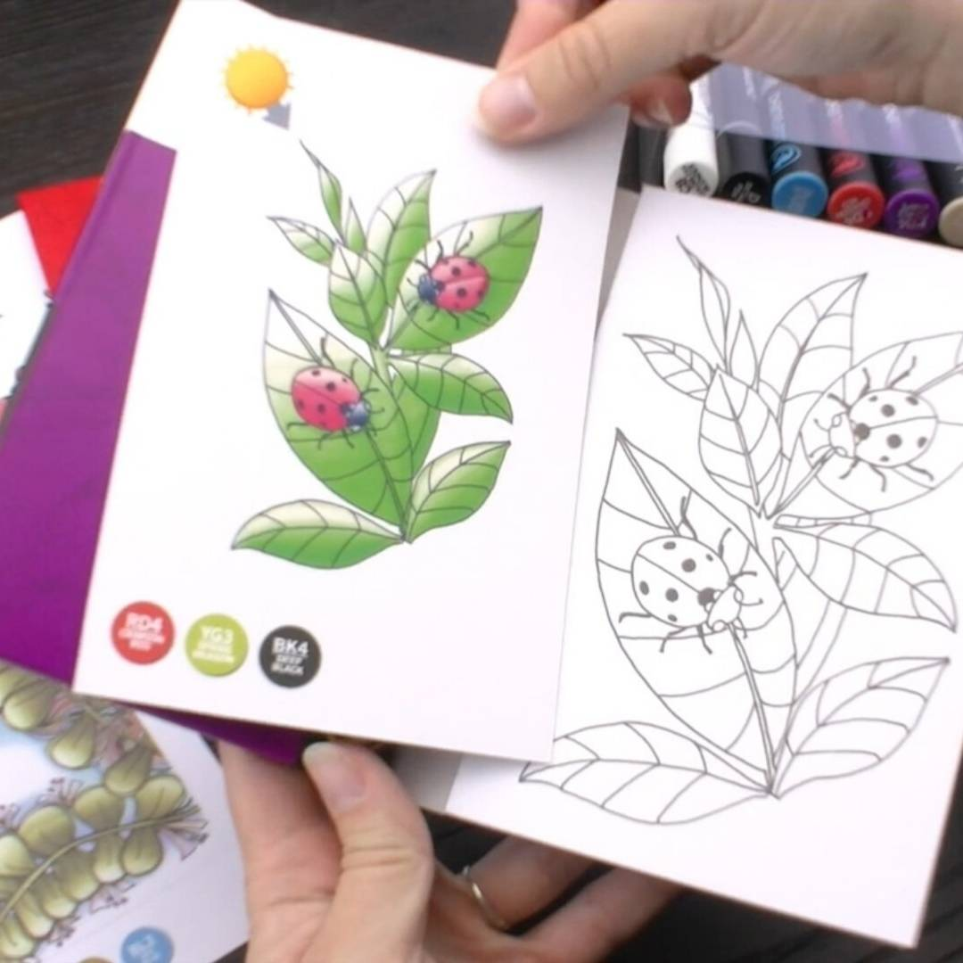 Chameleon Color Cards - Tarjetas para Colorear; Flores