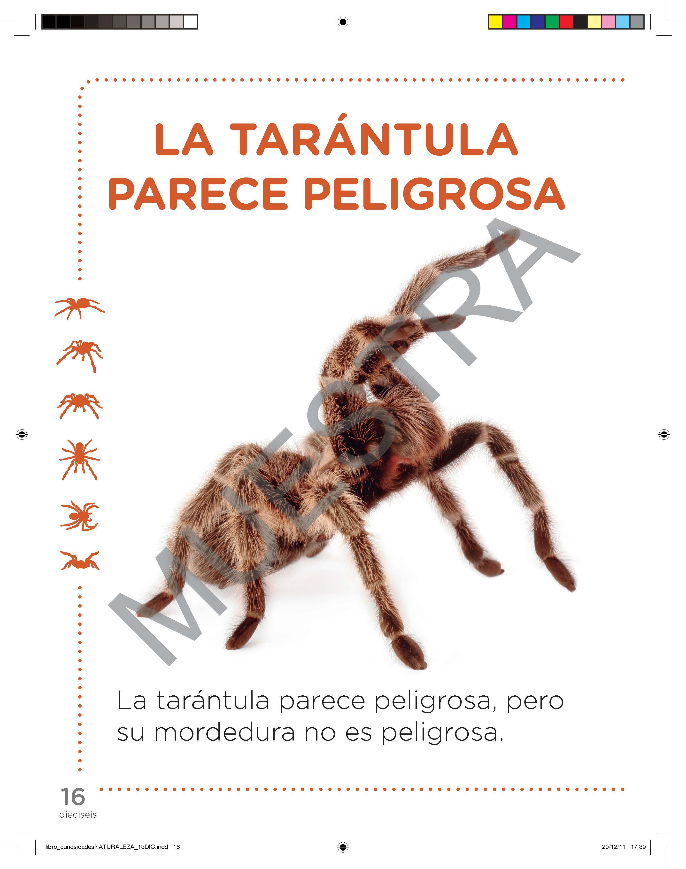 Tomo I Curiosidades del Mundo y la Naturaleza (Pack 2 libros / última edición 2016)
