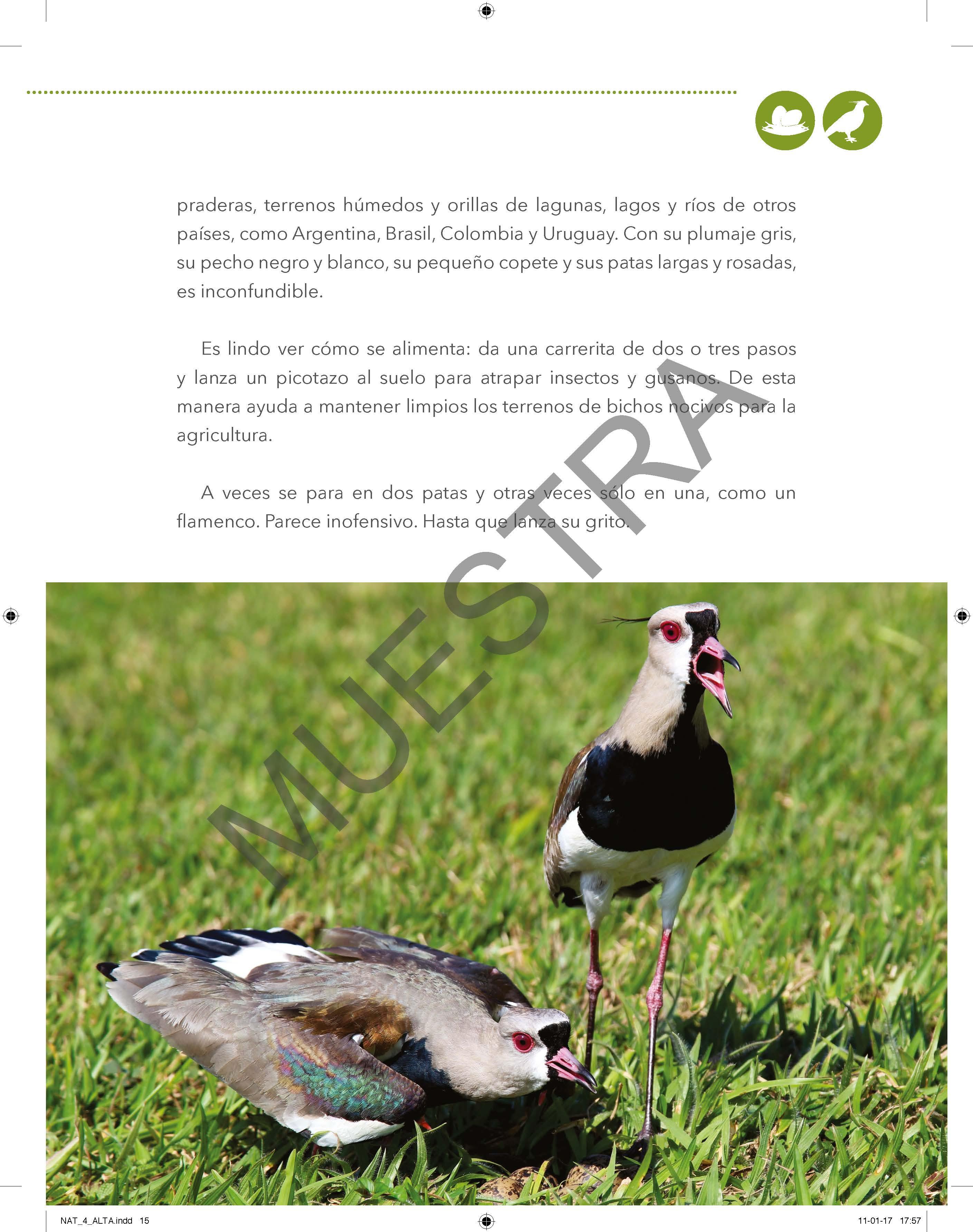 Tomo IV Curiosidades del Mundo y la Naturaleza (Pack 2 libros / última edición 2016)