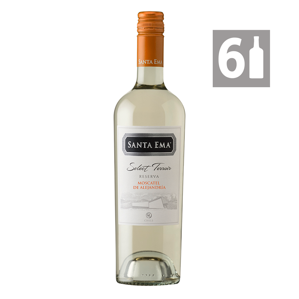 Pack 6 Moscatel de Alejandría Select Terroir Reserva - Viña Santa Ema