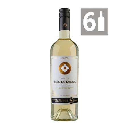 Pack 6 Sauvignon Blanc Gran Reserva Santa Digna - Viña Miguel Torres