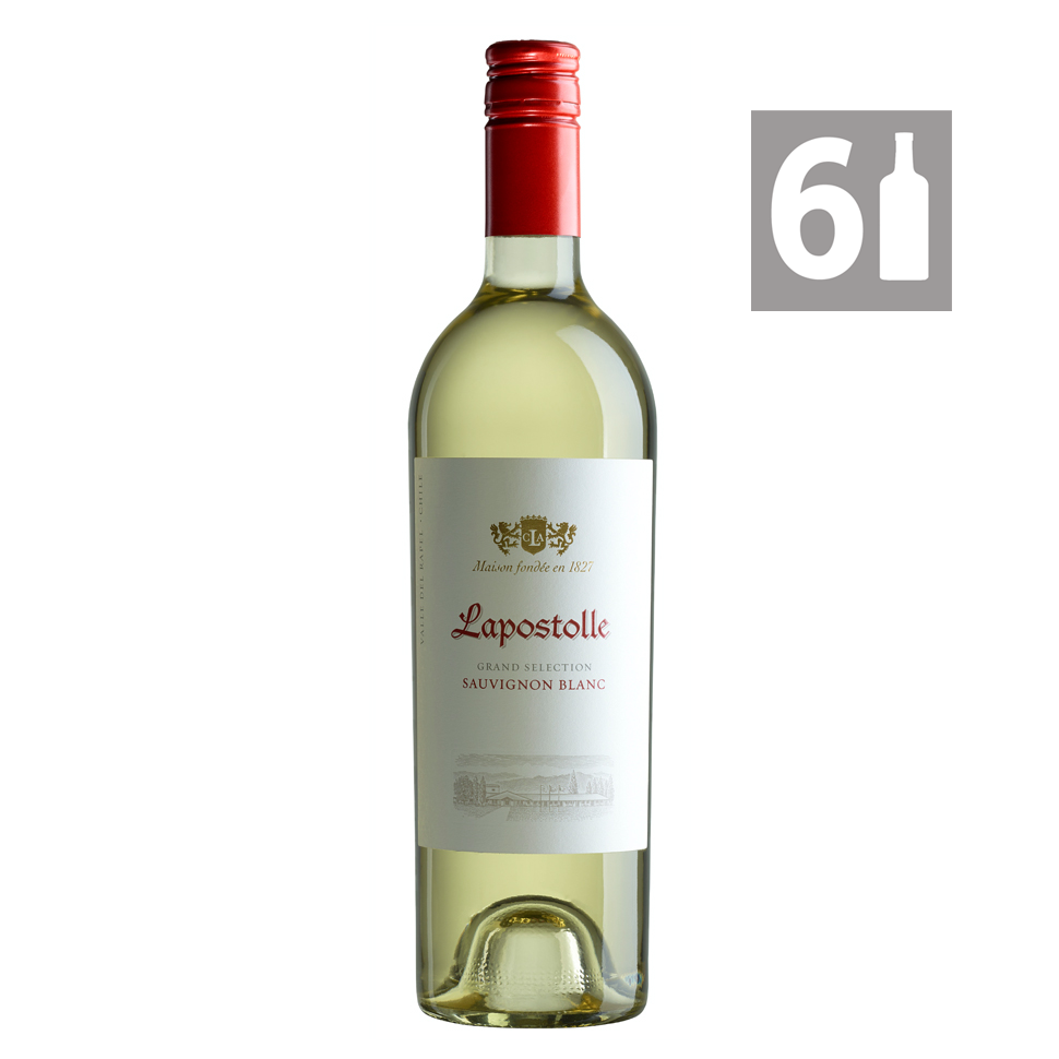 Pack 6 Grand Selection Sauvignon Blanc Reserva