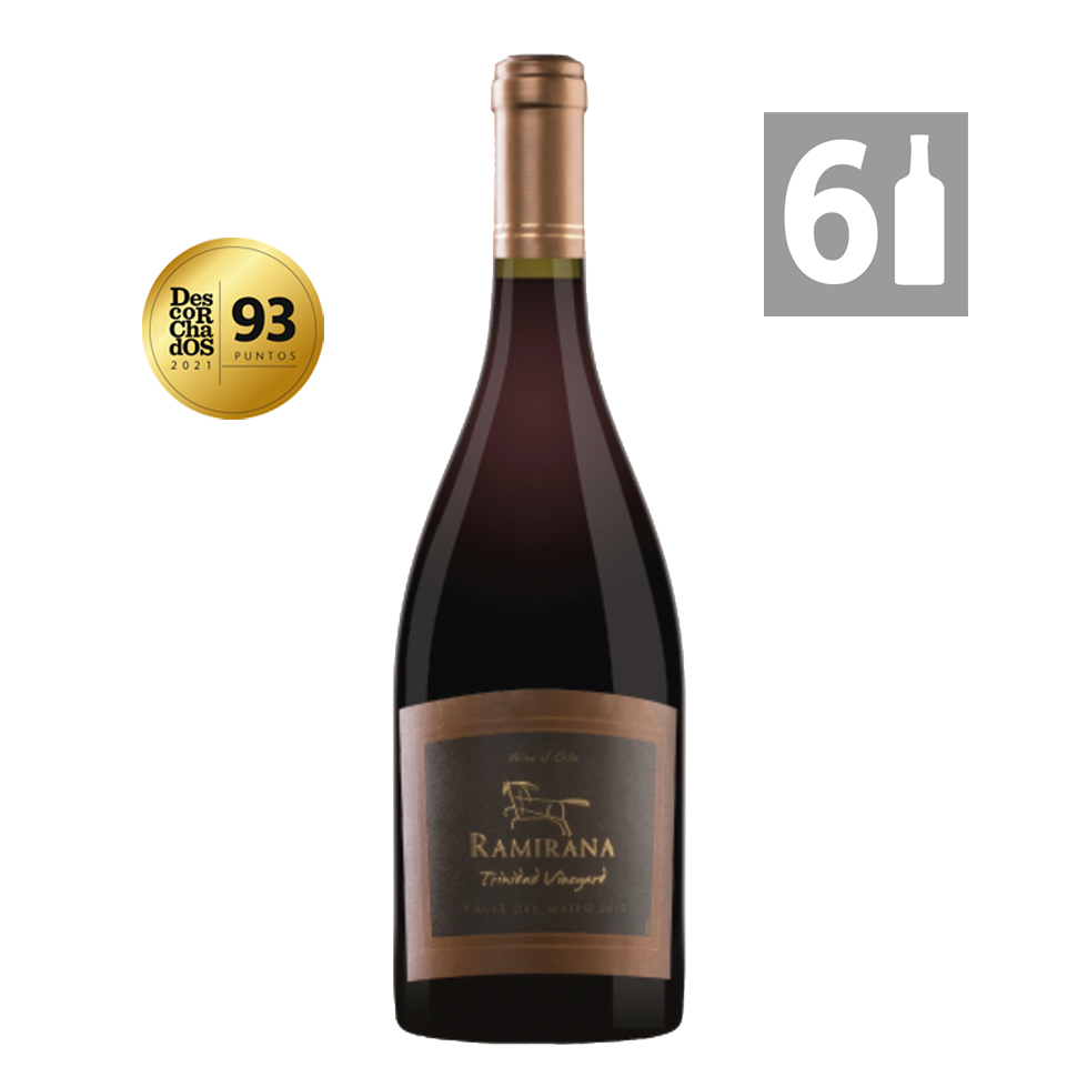 Pack 6 Blend Trinidad Vineyard Premium 2011 - Viña Ramirana