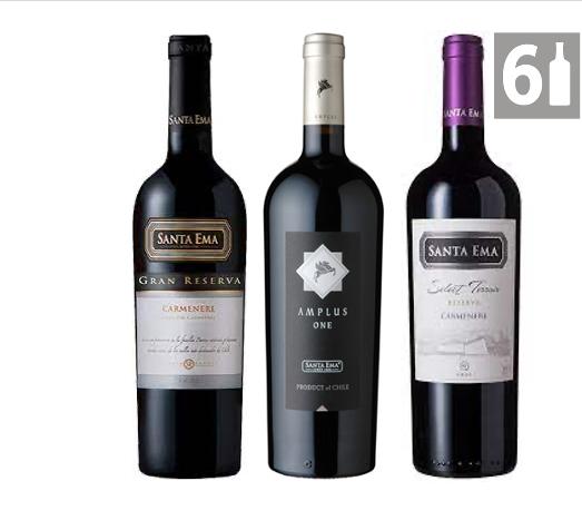 Mix 6 Vinos Santa Ema Carmenere Amplus, Gran Reserva , Terroir