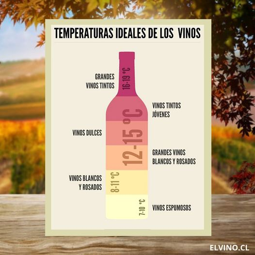 ¿Cuál es la temperatura ideal para servir un vino?