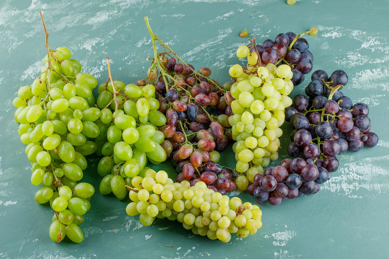 Conheça 5 tipos de uvas portuguesas