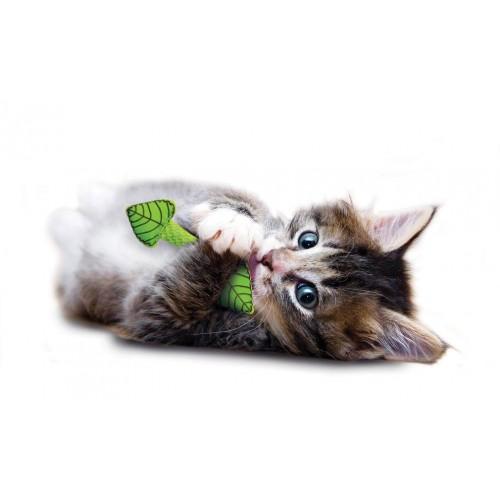 Petstages Juguete De Menta Para Gatos Y Erizos