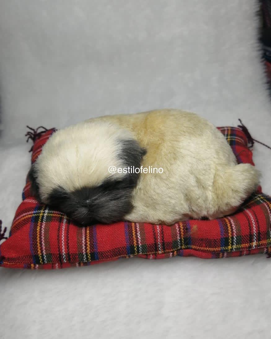 Pug Dormilon