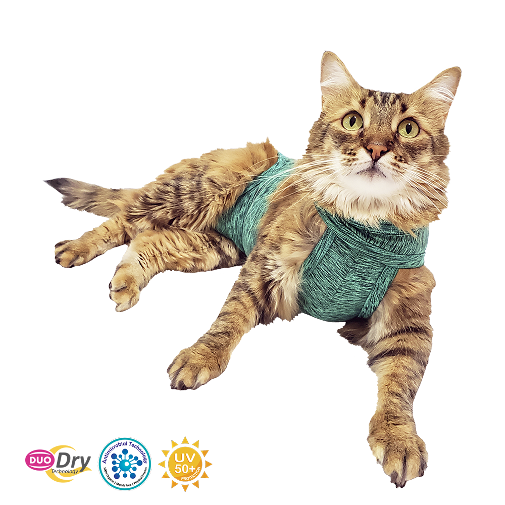Pet Med Body Post Operatorio para Gatos Verde 5 tallas
