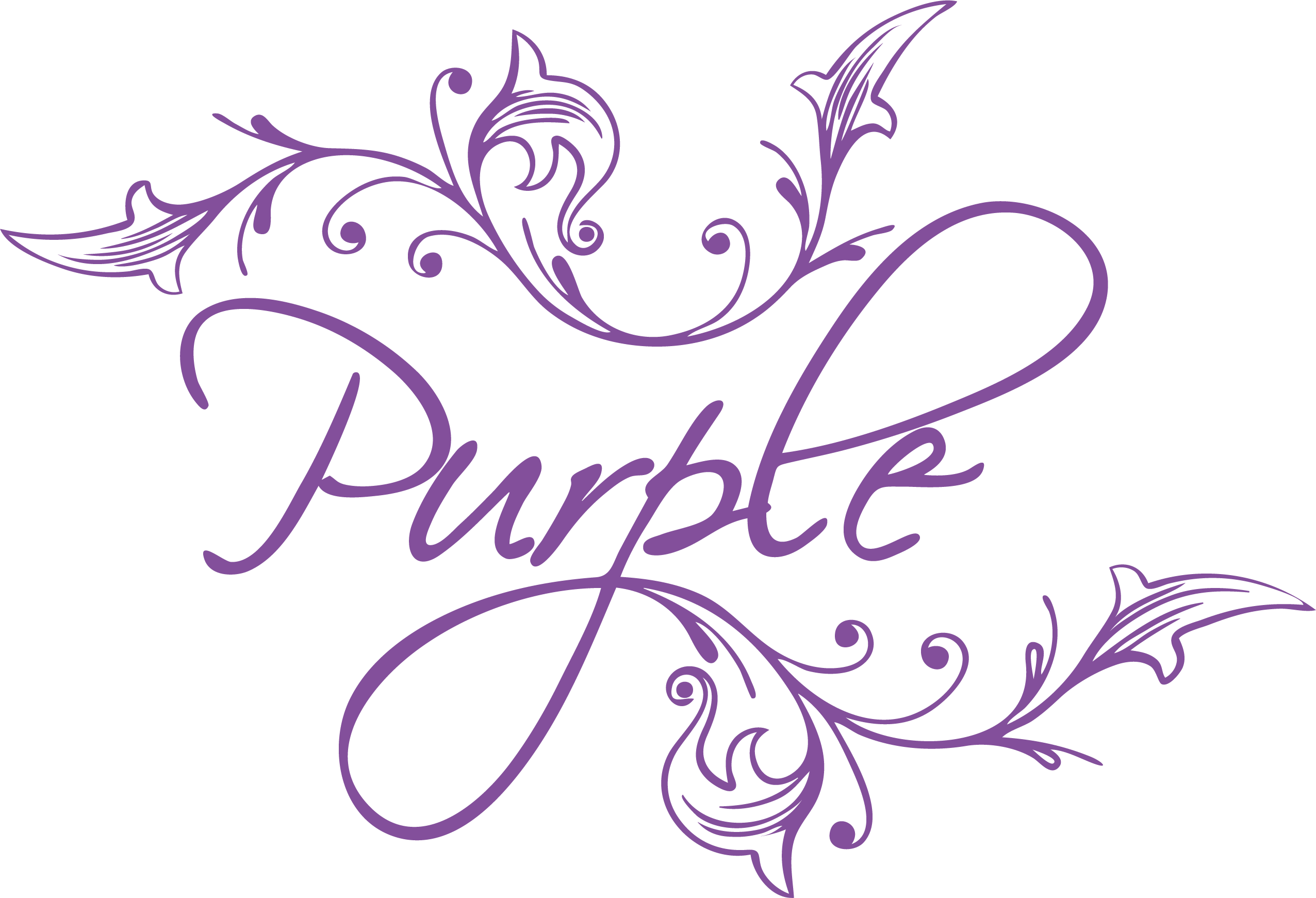 EXPERIENCE BY PURPLE