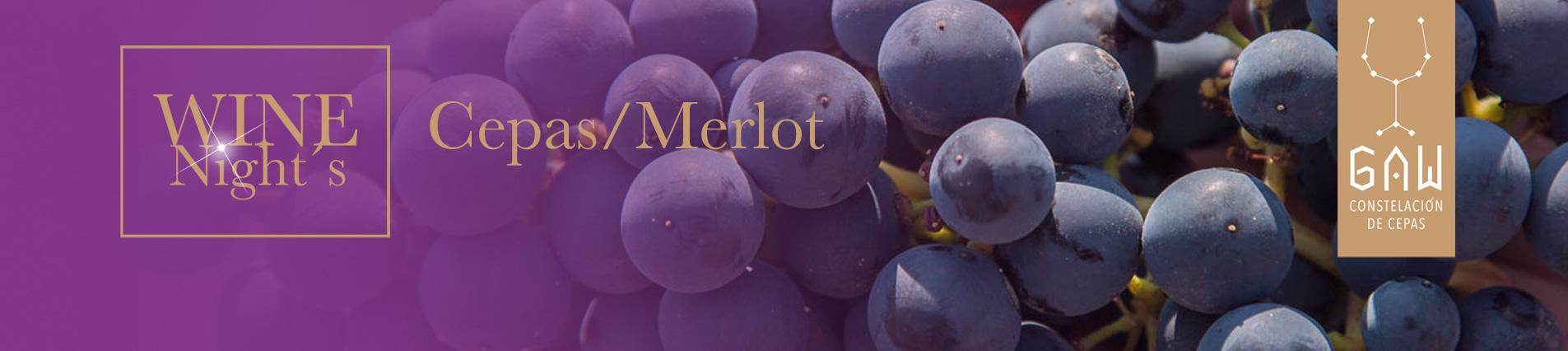Cepas Merlot
