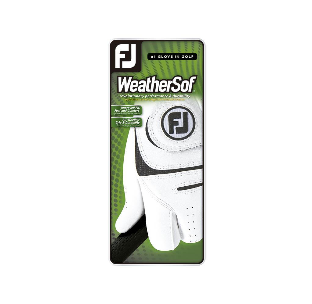 WeatherSof Cadet