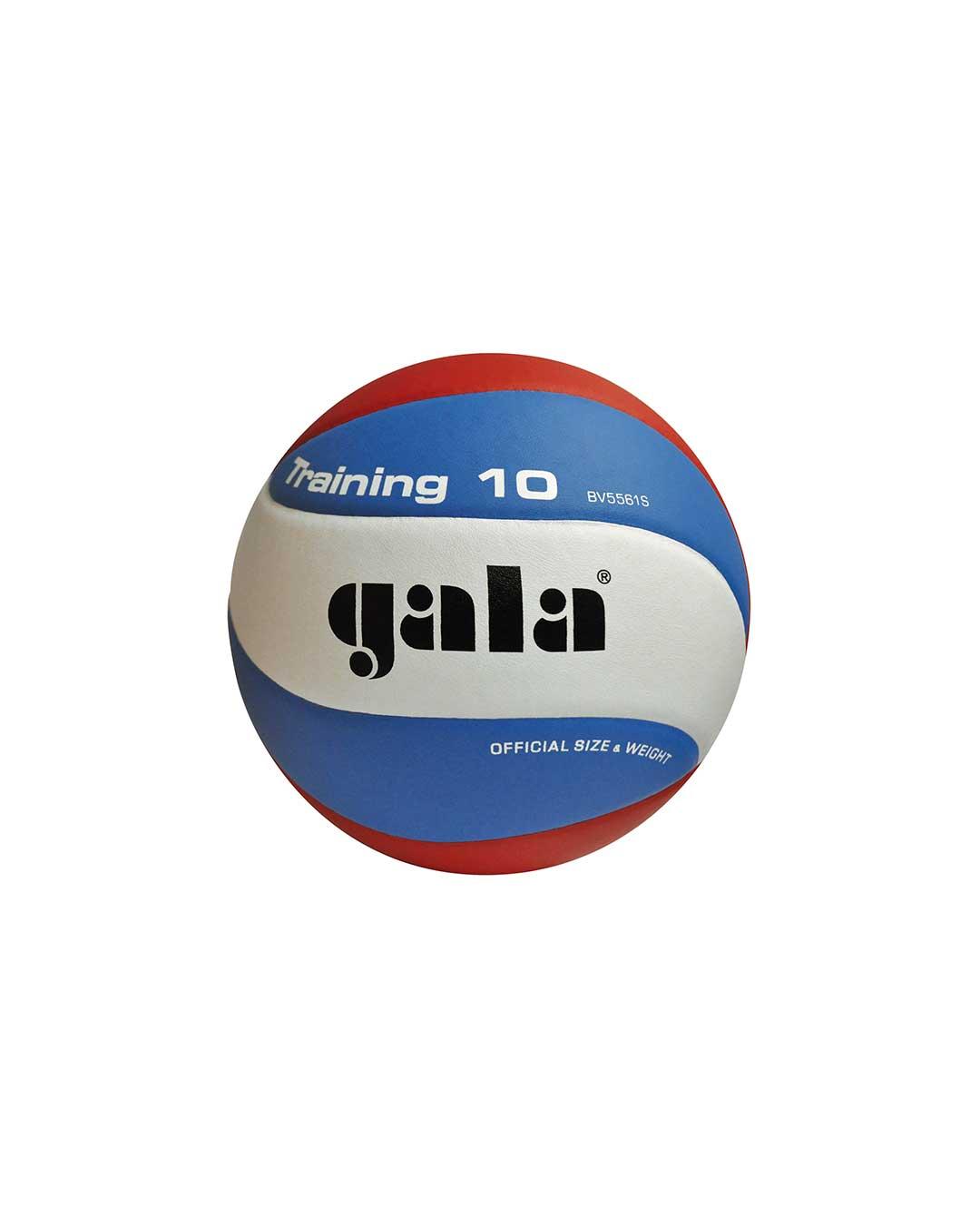Balón Vóleibol entrenamiento tradicional 280 g marca GALA