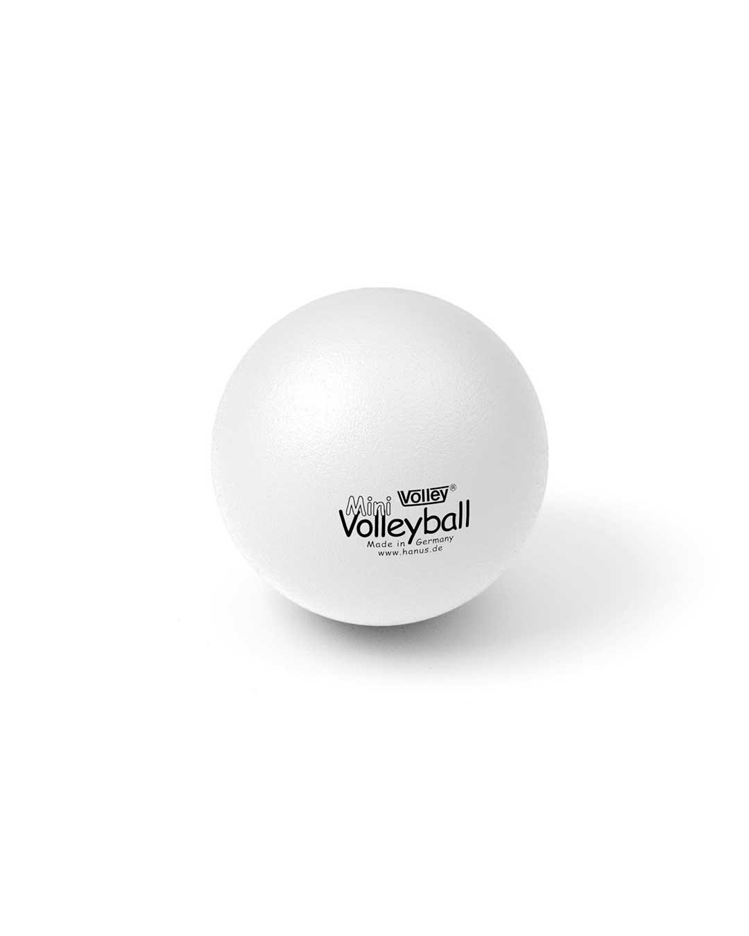 Pelota mini voleibol