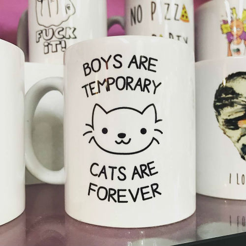TAZA BOYS ARE TEMPORARY