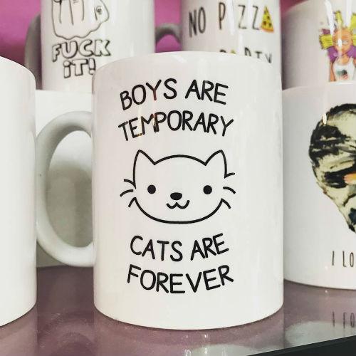 TAZA BOYS ARE TEMPORARY