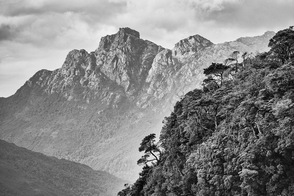 Pico Sulivan