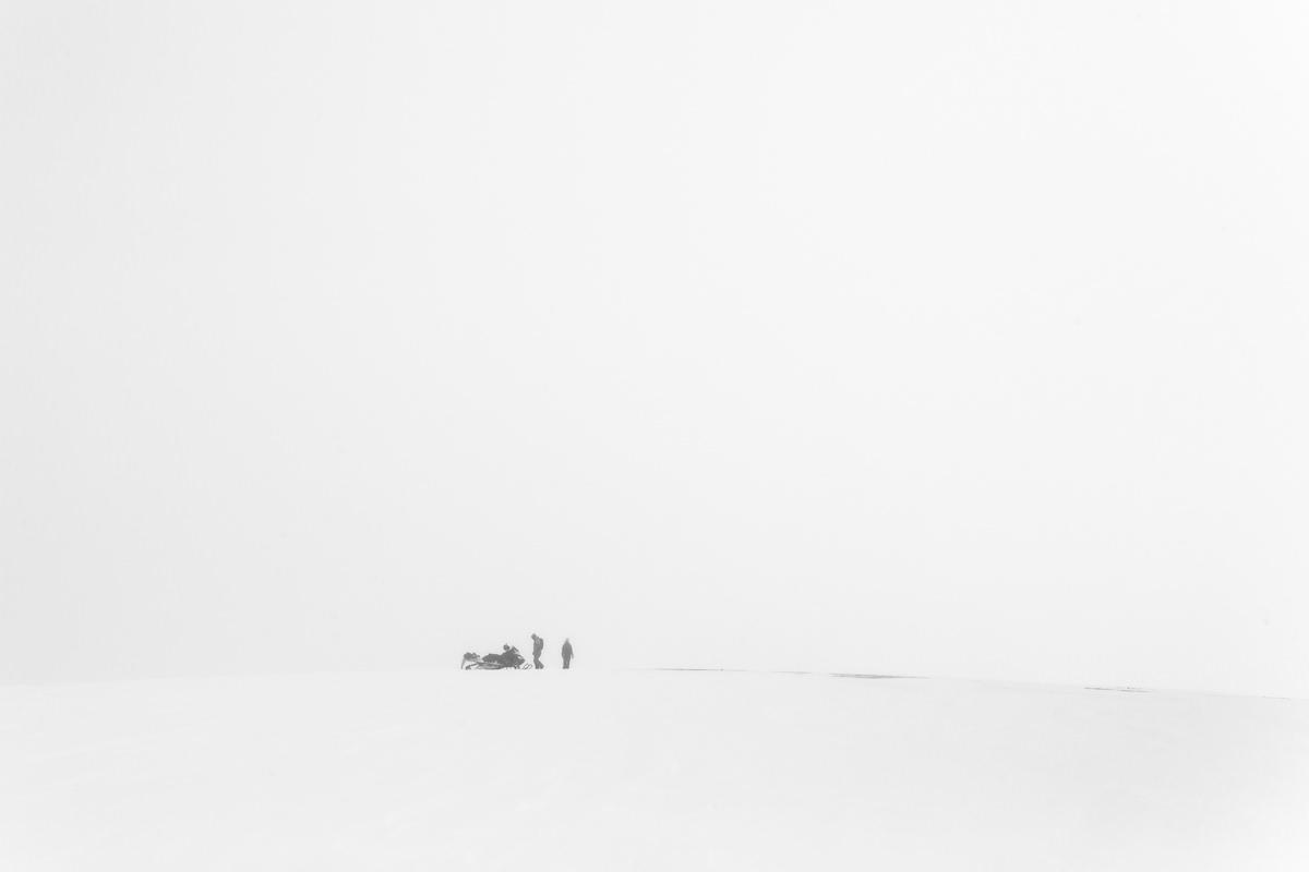 Perdidos en lo blanco