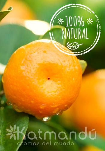 Aceite Esencial Mandarina 5 ml.