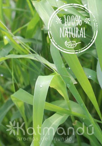 Aceite Esencial Palmarosa 5 ml.