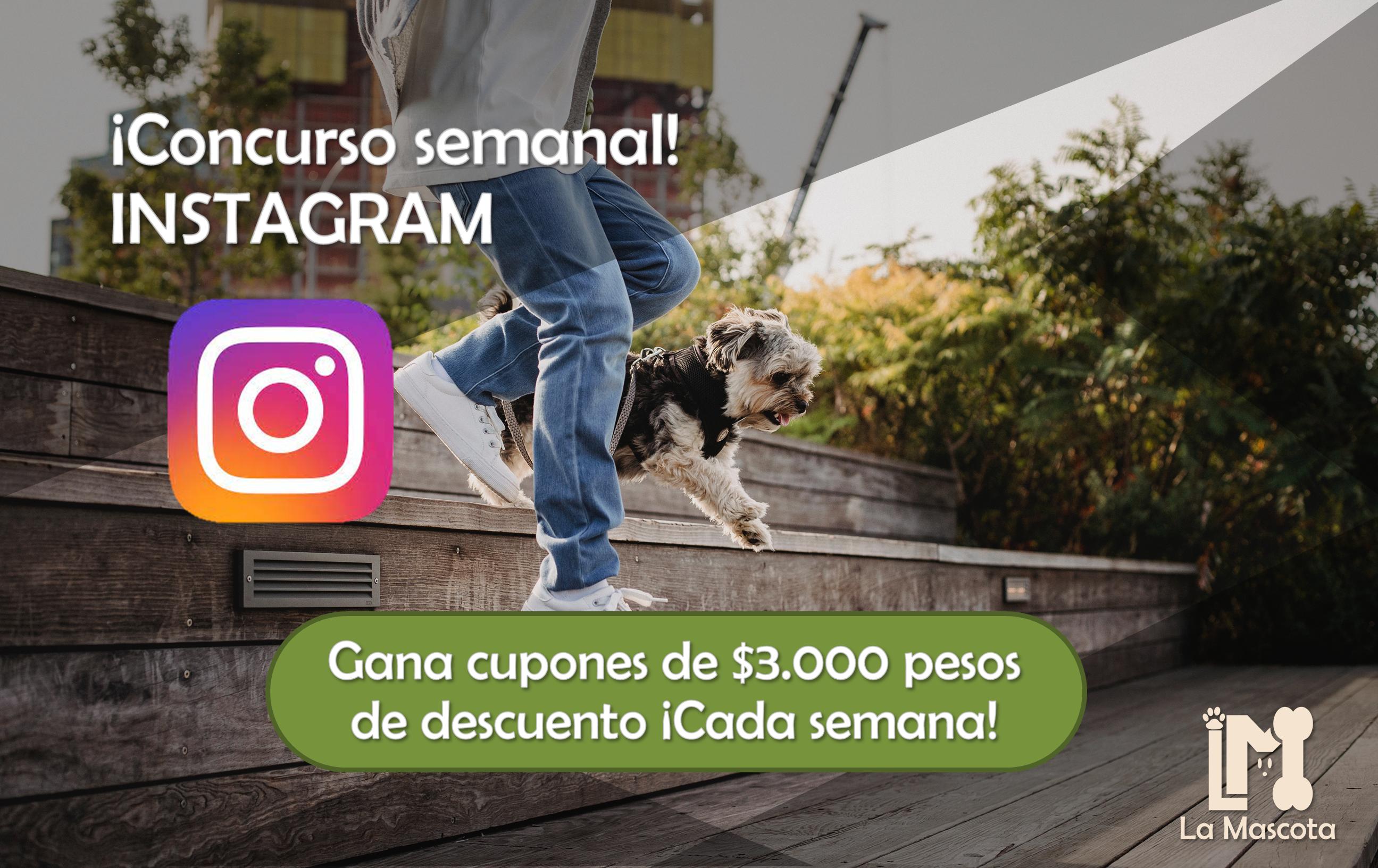 Concurso Semanal Instagram