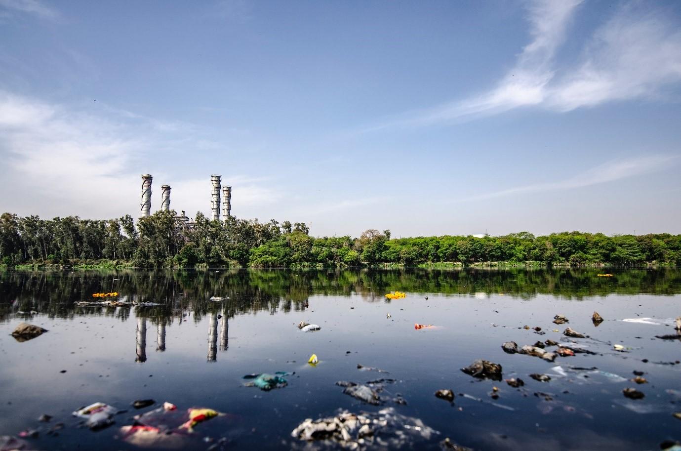 Día Internacional del Agua 2020