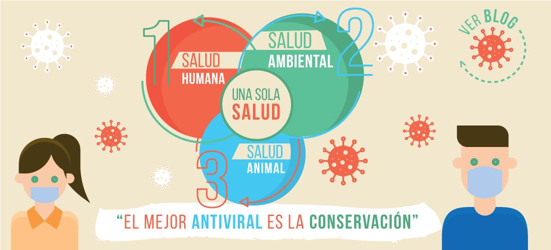 El mejor antiviral es la conservación de la naturaleza