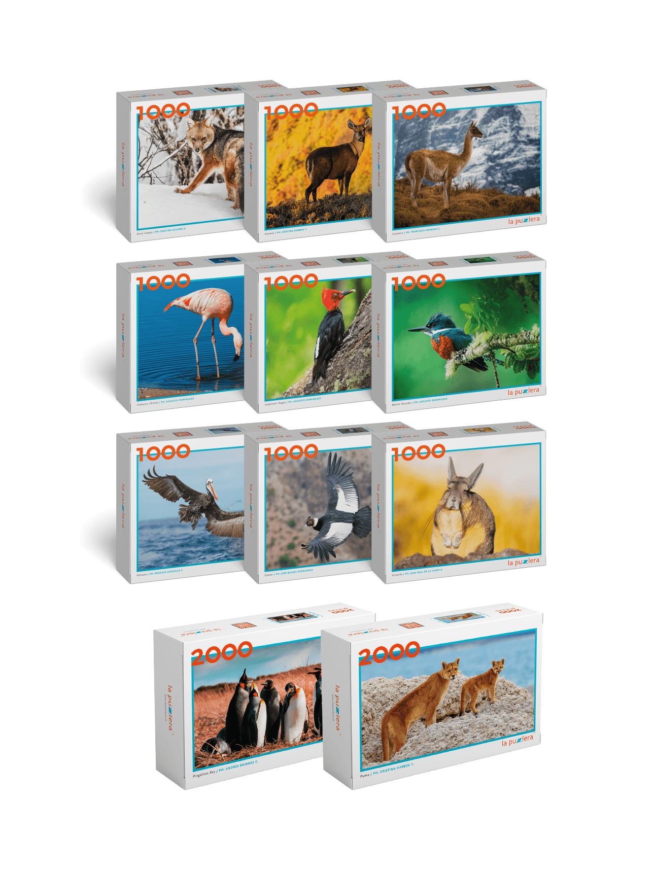 Colección Fauna de Chile (11 Puzzles)