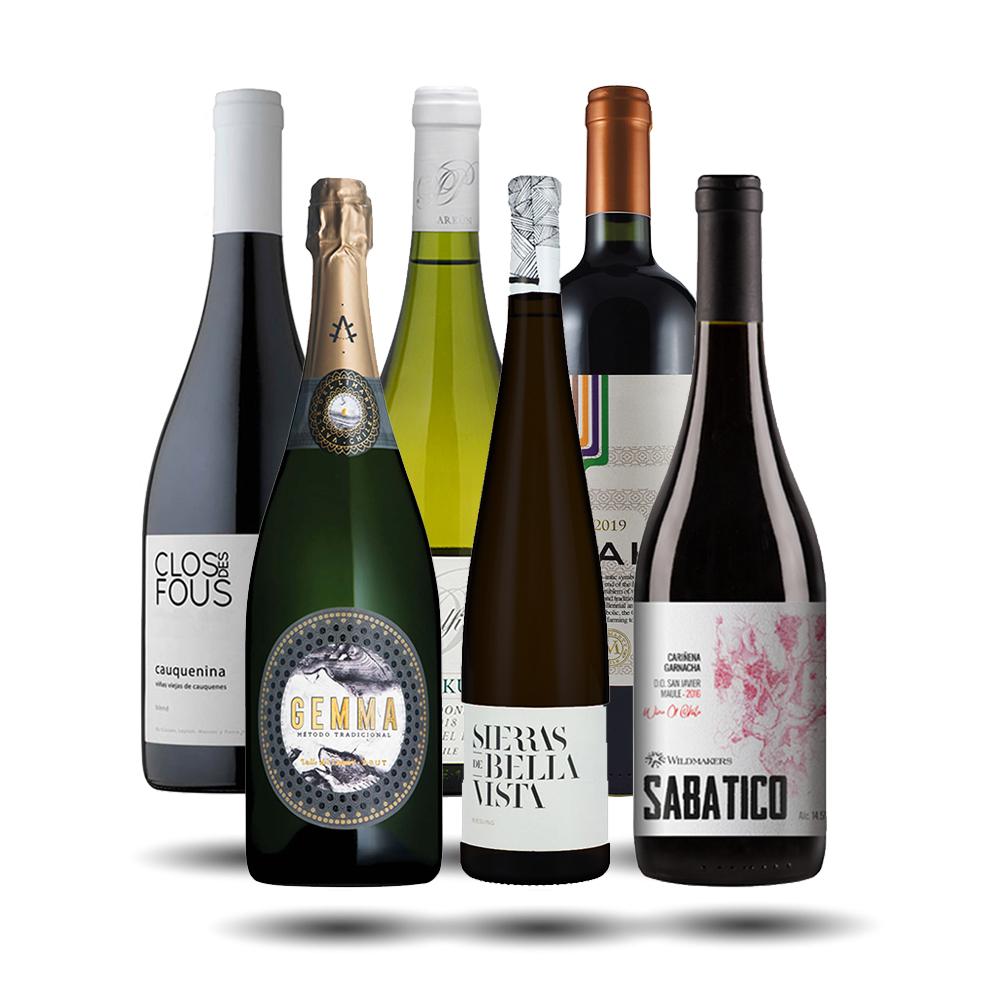1_ Caja Vinos Chilenos